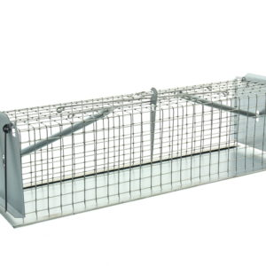Vangkooien