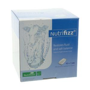 NUTRIFIZZ BRUISTABLET 21X2TABS